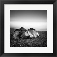 Framed Eternals II