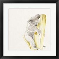 Framed Baby Koala I