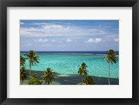 Framed Palm trees and coral reef, Crusoe's Retreat, Coral Coast, Viti Levu, Fiji