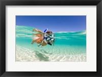 Framed Couple snorkeling, Beqa Island, Fiji
