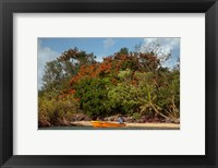 Framed Christmas Tree and Orange Skiff, Turtle Island, Yasawa Islands, Fiji