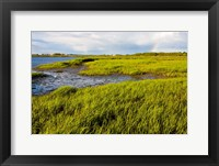 Framed Salt Marsh side of Long Beach,  Stratford, Connecticut
