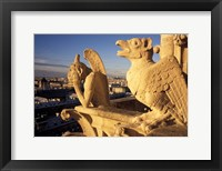 Framed Gargoyles of the Notre Dame Cathedral, Paris, France