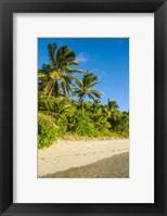 Framed Oarsman Bay, Fiji