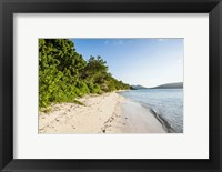 Framed White sandy beach, Fiji
