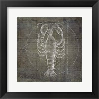 Framed Lobster Geometric Silver