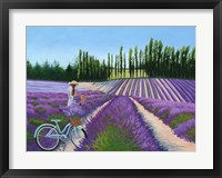 Framed Picking Lavender
