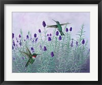 Framed Humming Lavender