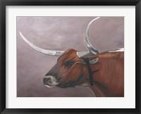 Framed Longhorn