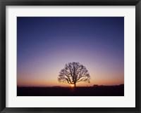 Framed Sundown