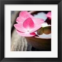 Framed Zen Bowl