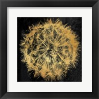 Framed Rich Gold Dandelion