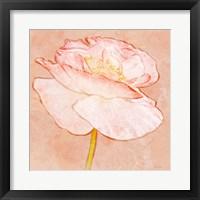 Framed Sweet Peach Poppy I