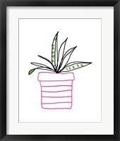 Framed Pink Pot Succulent