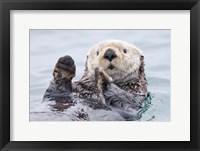 Framed Yesterday I Caught A Fish This Big! - Otter, Alaska