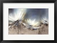 Framed Beachside Daisies