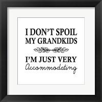 Framed I Don't Spoil My Grandkids Leaf Design White