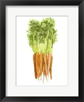 Framed Watercolor Veggie III