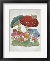 Framed Mushroom Collection I