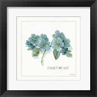 Framed My Greenhouse Forget Me Not