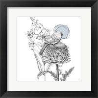 Framed Graphite Bird And Thistle