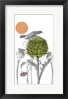 Framed Graphite Tall Thistle And Pods