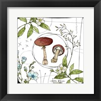 Framed Watercolor Woodlands Red Mushrooms