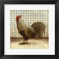 Framed Rooster on Damask II