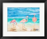 Framed Flamingo Beach I