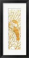 Framed Sealife on Gold II