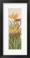 Framed Bird of Paradise Panel I