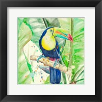 Framed Colorful Toucan