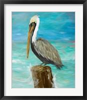 Framed Single Pelican on Post