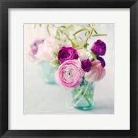 Framed Pink Ranunculus