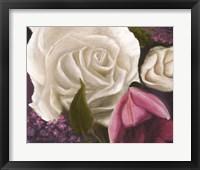 Framed Among the White Roses