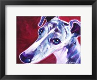 Framed Greyhound - Myrtle