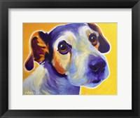 Framed Jack Russell - Mudgee