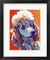 Framed Poodle - Bonnie