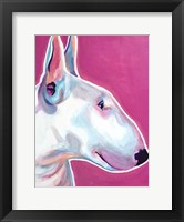 Framed Bull Terrier - Bubble Gum