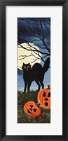 Framed Black Cat 2