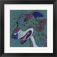 Framed Greyhound 2