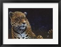 Framed Jaguar