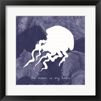 Framed Squid