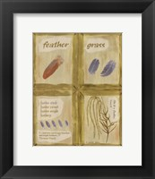 Feather Grass Framed Print