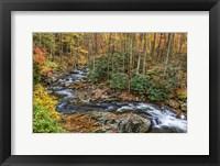 Framed Tremont Stream