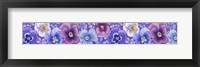 Framed Pansies border