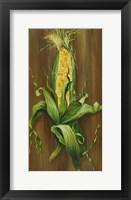 Framed Ear of Corn