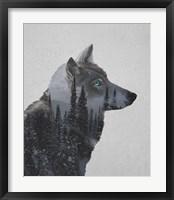 Framed Winter Wolf