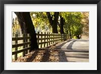 Framed Roadside Fence