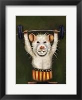 Framed Super Rat